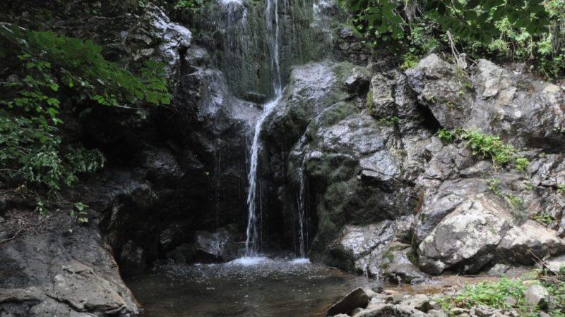 Agosto nel Parco Nazionale della Sila con Legambiente
