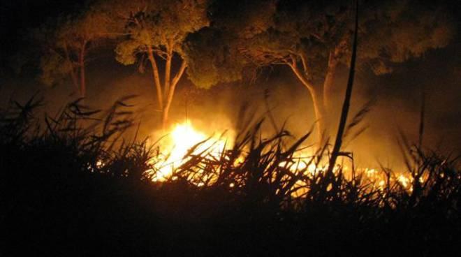Incendi nel crotonese: la macchia mediterranea di Sovereto distrutta dalle fiamme