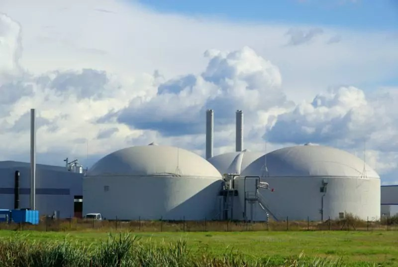 Il comune di Parenti dice sì alla centrale biomasse