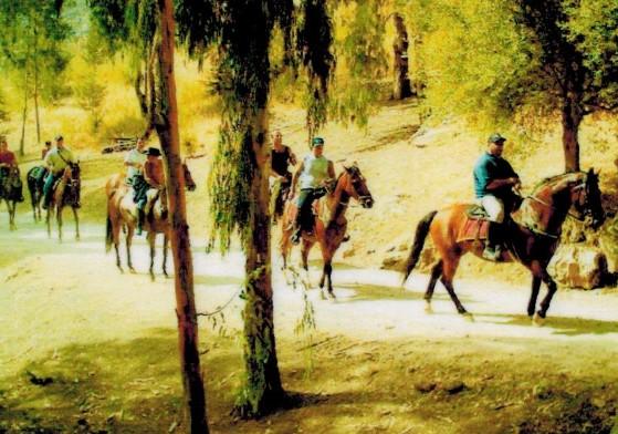 Raduno equestre organizzato dalla Proloco di Petronà