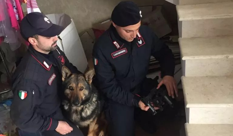 Mini arsenale rinvenuto a Scandale, un arresto dei Carabinieri