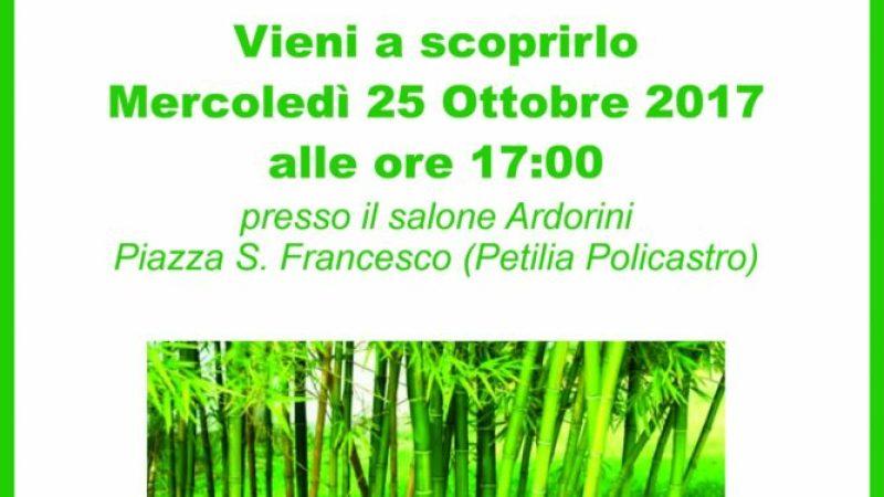Che cos'è il Bambù: sarà spiegato a Petilia Policastro