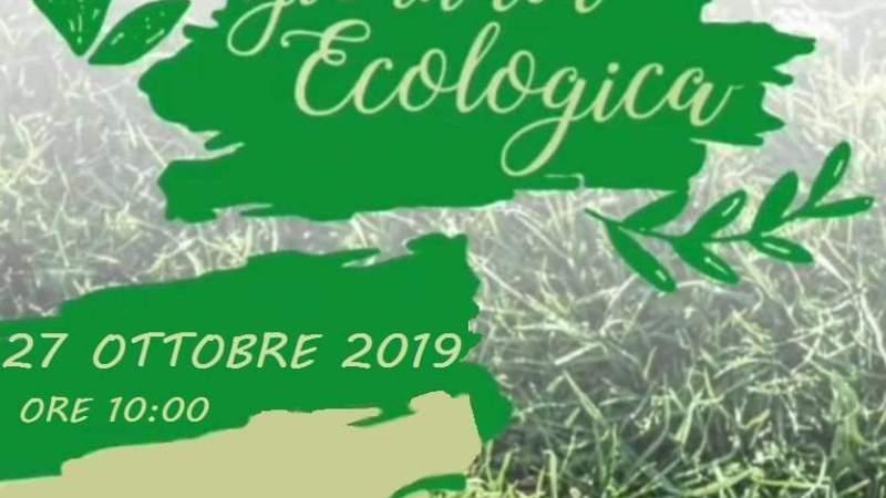 Rotary Interact organizza giornata ecologica