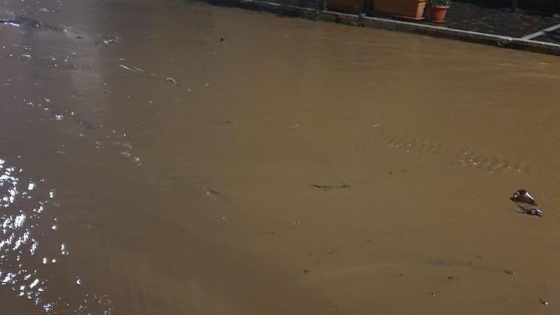 Emergenza climatica nel Vibonese: la denuncia di Legambiente