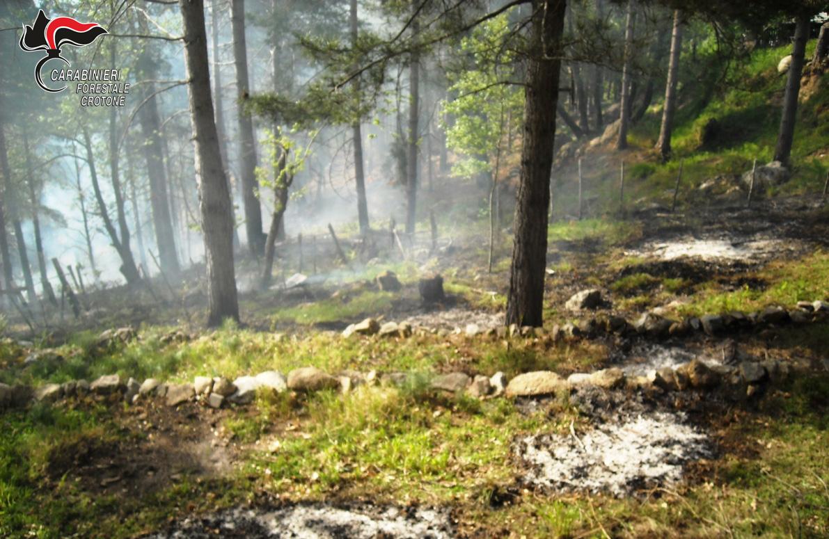 Incendio boschivo a Musco Ferro, intervengono i Carabinieri forestali
