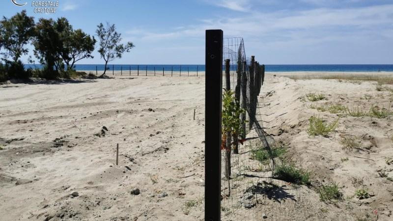 Spianamento illegale a Steccato di Cutro