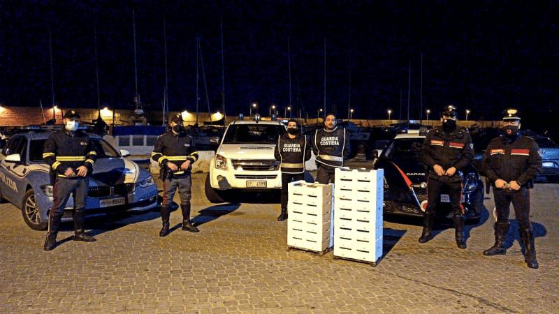 Sequestrati 460 kg di novellame a Cirò Marina