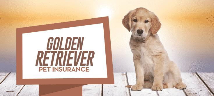 golden retriever pet insurance