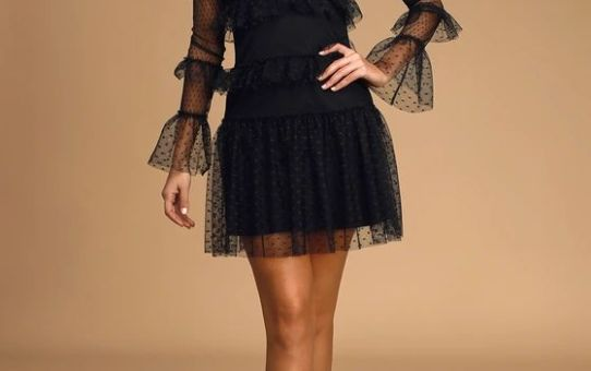 Juliette Black Swiss Dot Mesh Ruffled Long Sleeve Mini Dress