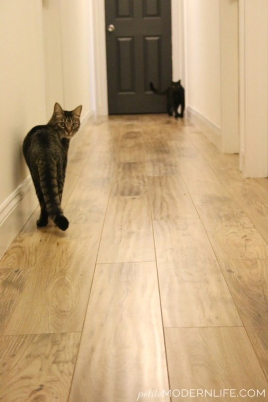 Why We Chose Laminate Floors Petite Modern Life
