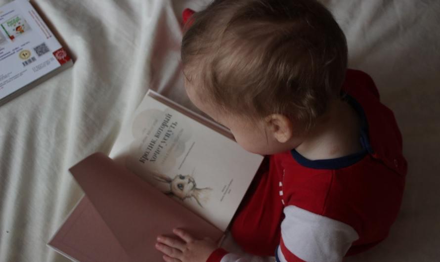 Sélection • Imagier & Livre bébé pour les tout-petits [0-1 ans]