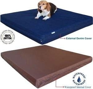 Dogbed4less Orthopedic Memory Foam Dog Bed 2