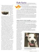 sacramentomagazinejuly08_Page_3