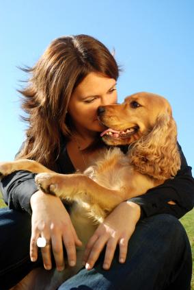 Como saber se o seu cachorro realmente te ama