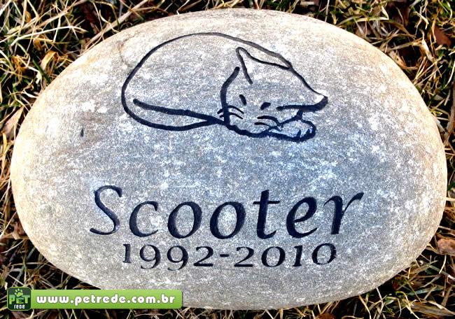 gato-morte-cemiterio-lapide-petrede