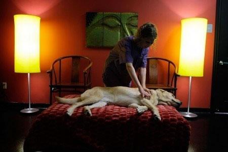 petrede-tratamento-luxo-massagem