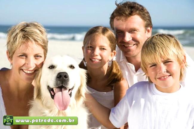 Deve-se levar os animais de estimação em passeios de família?