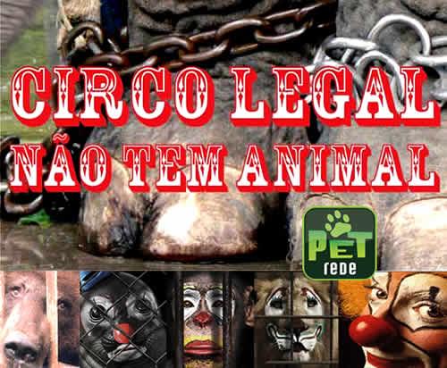 Lei contra uso de animais no circo causa polêmica no Rio