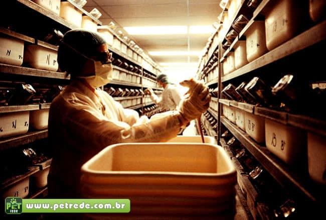 115 milhões de cobaias são usadas em um ano