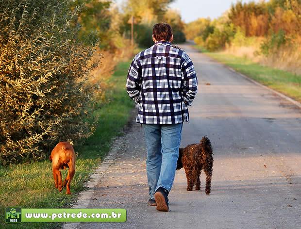 Veterinário dá dicas para passeio com animais de estimação