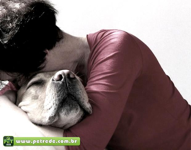 Estudo busca entender memória canina na relação com o homem