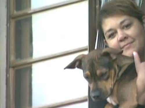 Sem lugar em apartamento, famílias são 'obrigadas' a abandonar cães