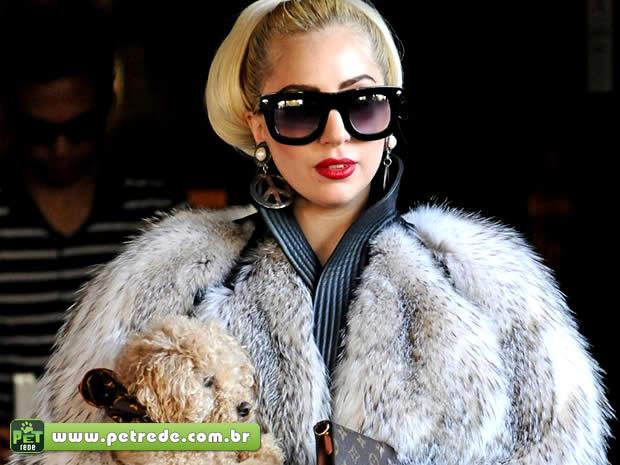 PETA diz que Rihanna e Lady Gaga são aberrações e motivo de piada