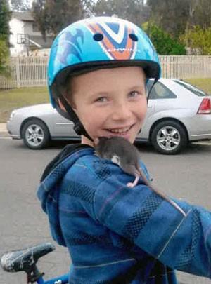 Família processa pet shop por morte de menino infectado por rato nos EUA