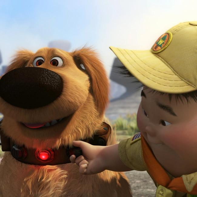 """Cachorro literalmente diz """"não"""" para o dono e faz sucesso na internet"""