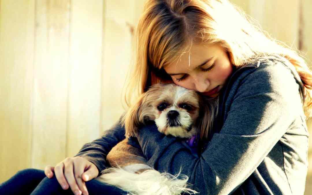 A ciência provou: seu cachorro se preocupa quando você está triste