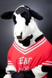 cow-headshot-linkedin