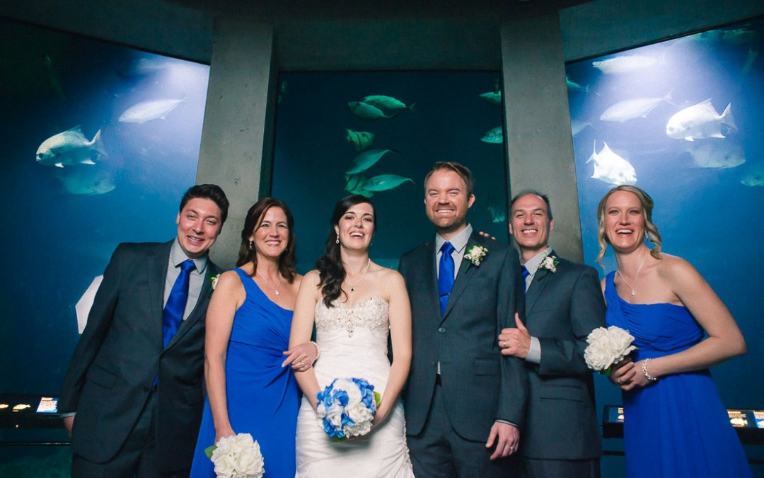Wedding Photography at the Baltimore National Aquarium | Stephanie & Toren