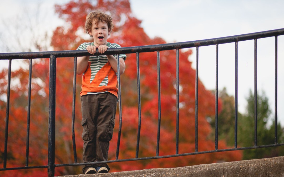Adventurous Youth Among The Colors Of Fall
