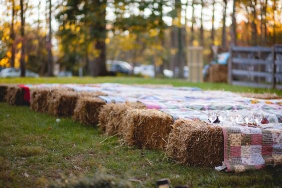 backyard-wedding-with-natures-help-30