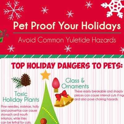 Pet Proof Your Holidays Avoid Common Yuletide Hazards