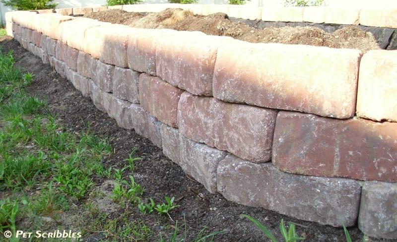 Building Raised Garden Pavers