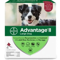 Advantage II Flea Treatment for Large Dogs 21-55 lbs 4 Pack.