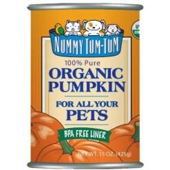 Nummy Tum Tum Pumpkin 15 oz can.