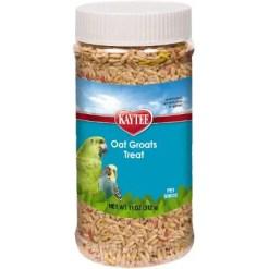 Kaytee Forti-Diet Pro Health Oat Groats Bird Treats, 11-oz Jar.