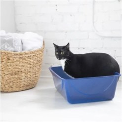 Petmate Basic Cat Litter Pan, Jumbo Cat inside.
