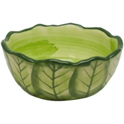 Kaytee Vege-T-Bowl, painted to look like a Cabbage .