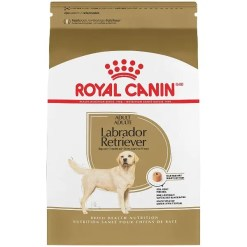 Royal Canin Labrador Retriever Adult Dry Dog Food, 30-lb.