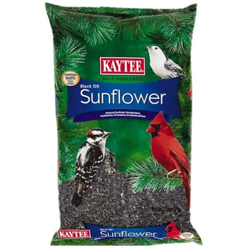 Kaytee Black Oil Sunflower Wild Bird Food, 5-lb Bag.