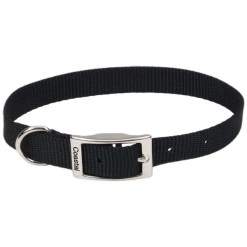 Coastal Single-Ply Dog Collar, Black.