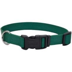 Coastal Adjustable Dog Collar with Plastic Buckle, Hunter Green, 12 in SKU 7648404680