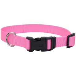 Coastal Adjustable Dog Collar with Plastic Buckle, Pink Bright, 12 in. SKU 7648406307