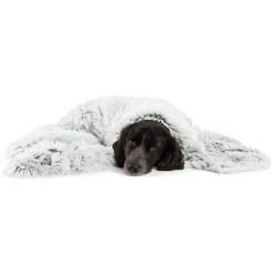 Best Friends by Sheri Throw Shag Dog & Cat Blanket, Frost 40x50