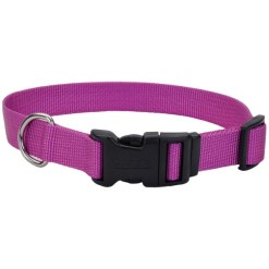 Coastal Adjustable Dog Collar with Plastic Buckle, Orchid, 10-14 in. SKU 7648464012