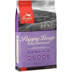 ORIJEN Large Breed Puppy Dry Dog Food, 25-lb Bag SKU 6499210225
