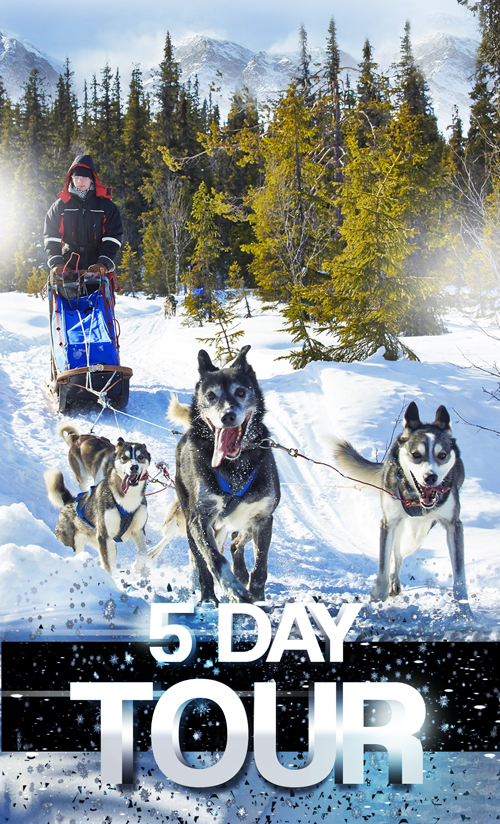 5-days-tour-husky-petterkarlsson1